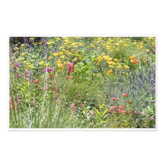 Wild flowersa stationery