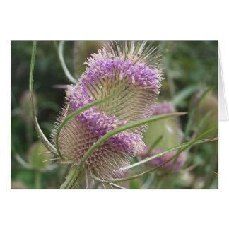 Wild FlowersNotecard Card