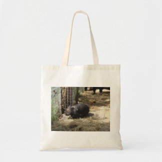 Wild For Wombats Budget Tote Bag