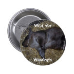 Wild For Wombats Pin