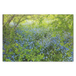 Wild forge me nots flowers photo tissue paper