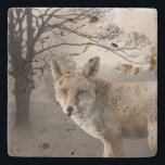"""Wild Fox Photography Stone Coaster<br><div class=""""desc"""">Beautiful stone coaster,  with digital manipulated photos of a tree and a close up picture of a fox.  Chose the stone style you prefer and customize to add your own text.  Lovely gift idea for anyone.</div>"""