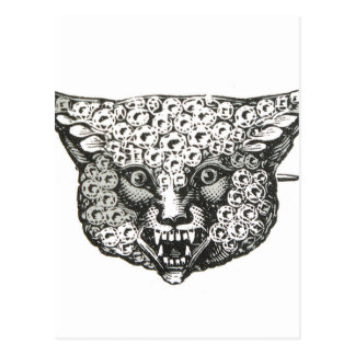 wild fox postcard