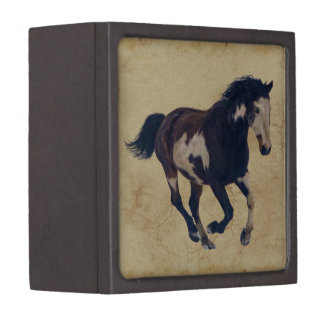 Wild Galloping Pinto American Paint Horse Gift Box