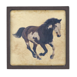 Wild Galloping Pinto American Paint Horse Jewelry Box