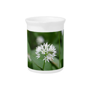 Wild garlic or ramsons Allium ursinum Beverage Pitcher