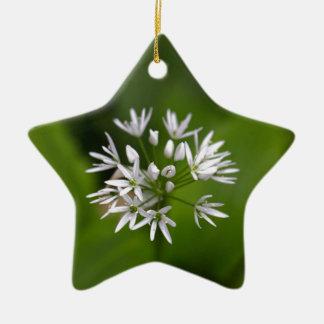 Wild garlic or ramsons Allium ursinum Ceramic Ornament