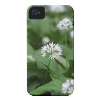 Wild garlic or ramsons Allium ursinum iPhone 4 Case-Mate Case