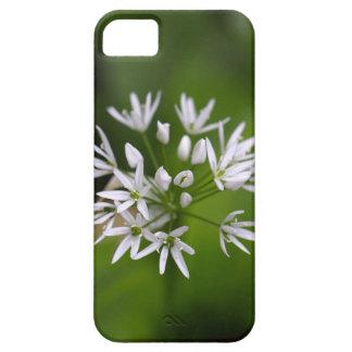 Wild garlic or ramsons Allium ursinum iPhone SE/5/5s Case