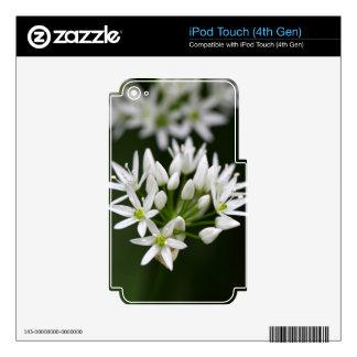 Wild garlic or ramsons Allium ursinum iPod Touch 4G Skins