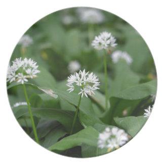 Wild garlic or ramsons Allium ursinum Melamine Plate