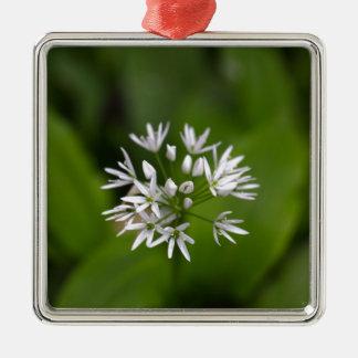 Wild garlic or ramsons Allium ursinum Metal Ornament