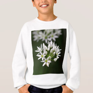 Wild garlic or ramsons Allium ursinum Sweatshirt