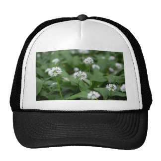 Wild garlic or ramsons Allium ursinum Trucker Hat
