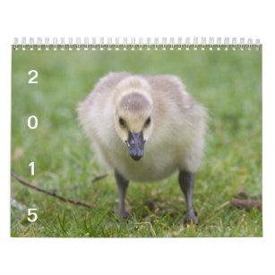 Wild Geese 2015 - Goose Calendar