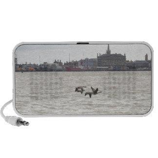Wild Geese Portable Speaker