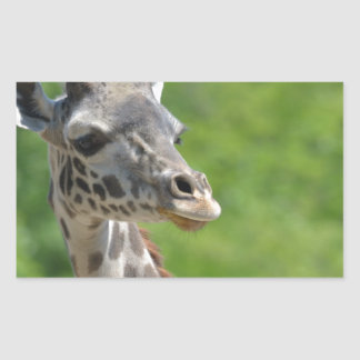 Wild Giraffe Rectangular Sticker