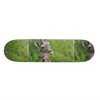 Wild Giraffe Skateboard Deck