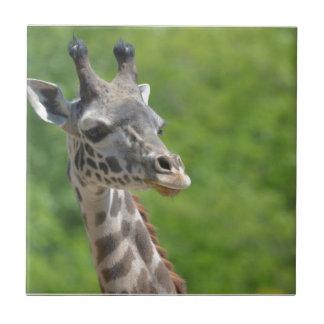 Wild Giraffe Tile