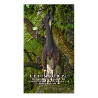 Wild Goat Personal Business Card
