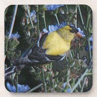Wild Goldfinch Finch Bird Wildlife Animal Flowers Beverage Coaster