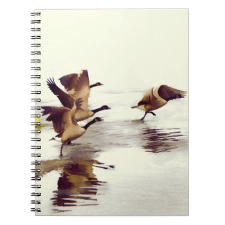 """Wild Goose Chase""   -  Running Geese Notebook"