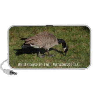 Wild Goose Doodle Speaker