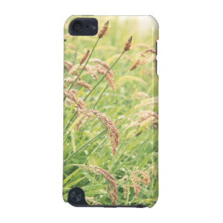 Wild gramineous iPod touch (5th generation) covers