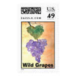 Wild Grapes Stamps