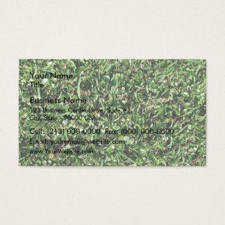 Wild grass and clover texture business card