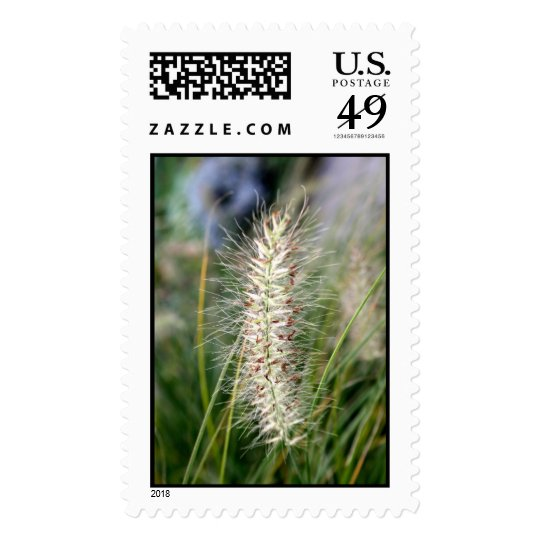 Wild Grass Seeds Customized Stamp