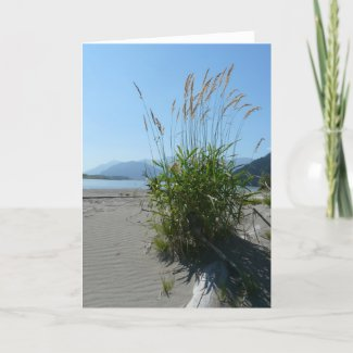 Wild Grasses card
