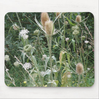 Wild Grasses Mousepad