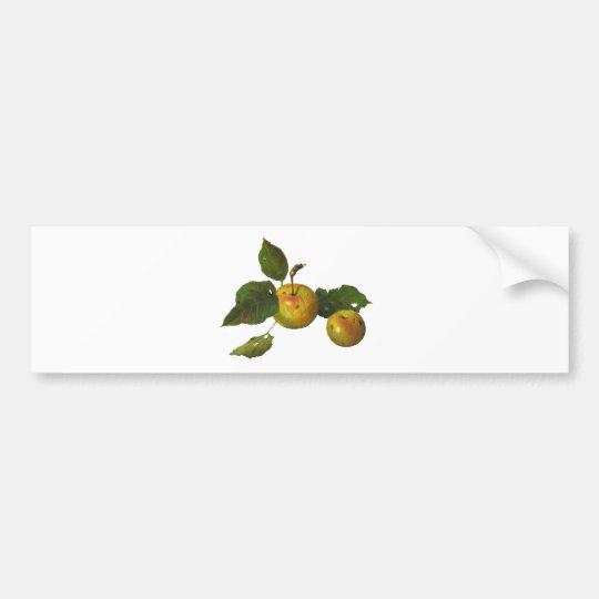 Wild Green Apples in Color Pencil: Original Art Bumper Sticker