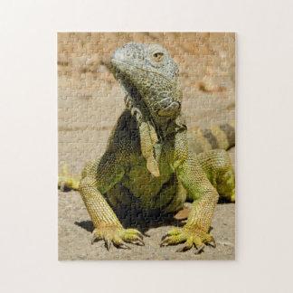Wild Green iguana Puzzle