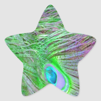 Wild Green Peacock Feathers Star Sticker