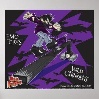 WILD GRINDERS EMO CRYS BOARD SLIDE POSTER print