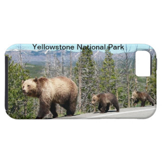 Wild Grizzly Bear Mama and Cubs in Yellowstone iPhone SE/5/5s Case