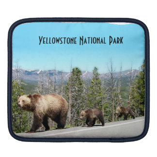Wild Grizzly Bear Mama and Cubs in Yellowstone Sleeve For iPads