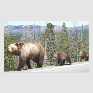 Wild Grizzly Bear Mama and Cubs in Yellowstone Rectangular Stickers