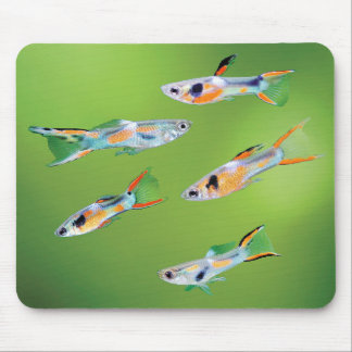 Wild Guppies Mouse Pad