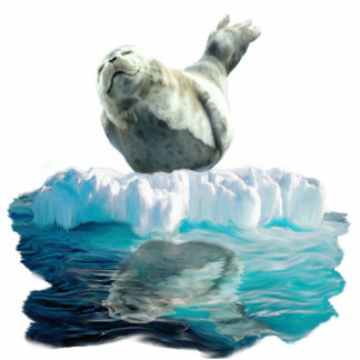 WILD HARBOR SEAL sculpted Wildlife Art Gift Statuette