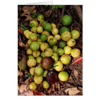 Wild Hawaiian lilikoi avocados Greeting Card