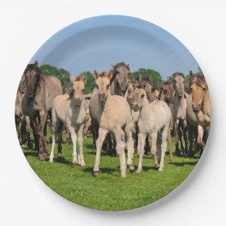 Wild Herd Dulmen Horses with Foals - Happy Party Paper Plate