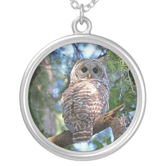 Wild Hoot Owl Staring in the Forest Silver Plated Necklace