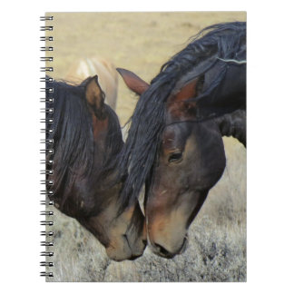Wild horse couple notebook