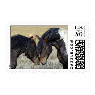 Wild horse couple postage