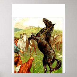 """Wild Horse"" Cowboy Western Poster"
