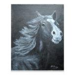 wild horse custom letterhead