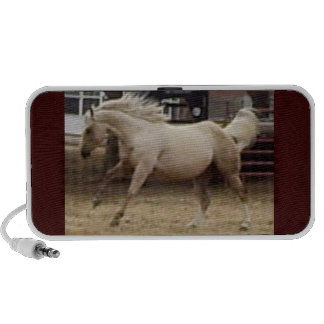 Wild Horse Doodle PC Speakers